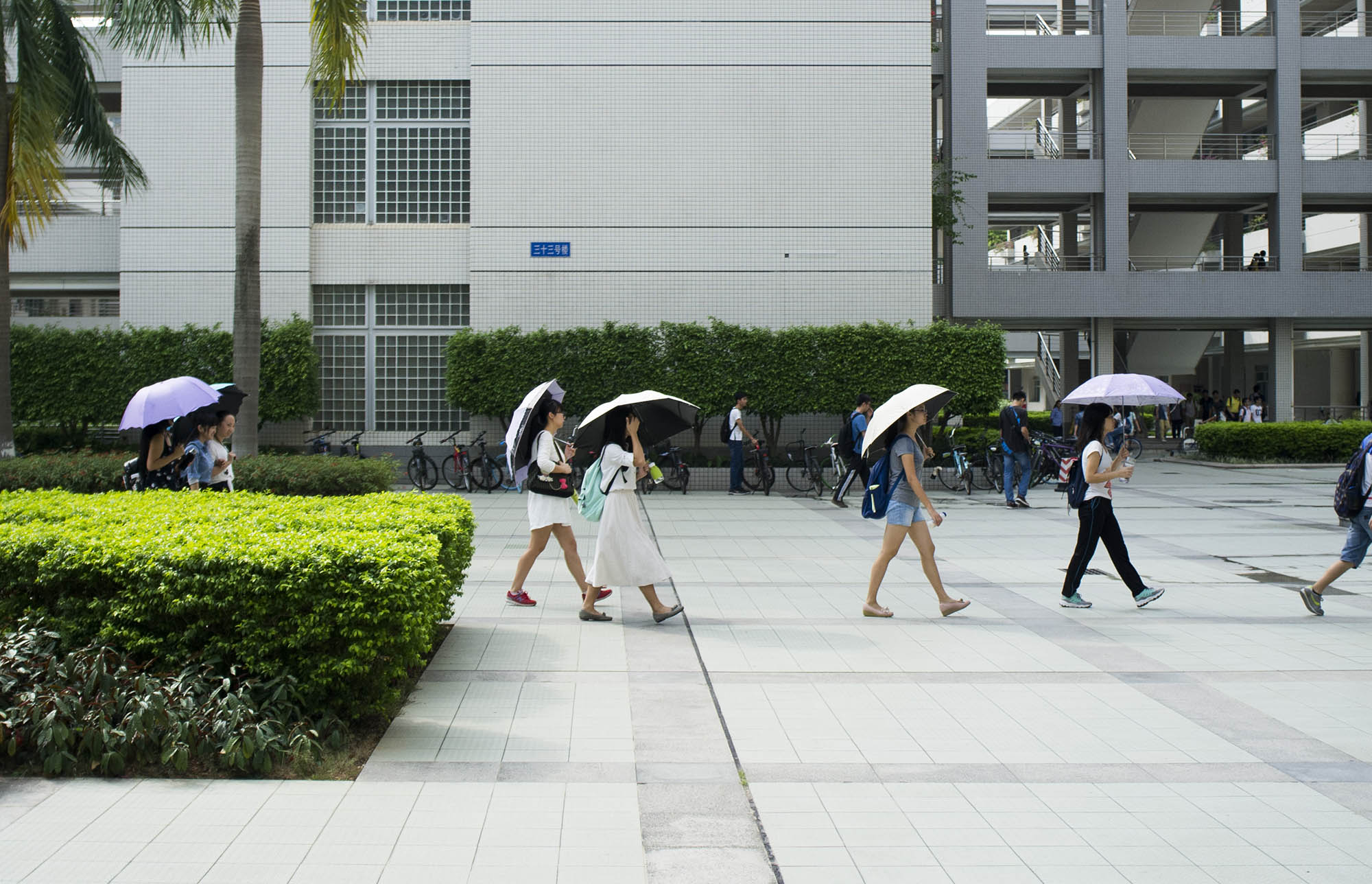 Students with umbrellas in Guangzhou university campus.