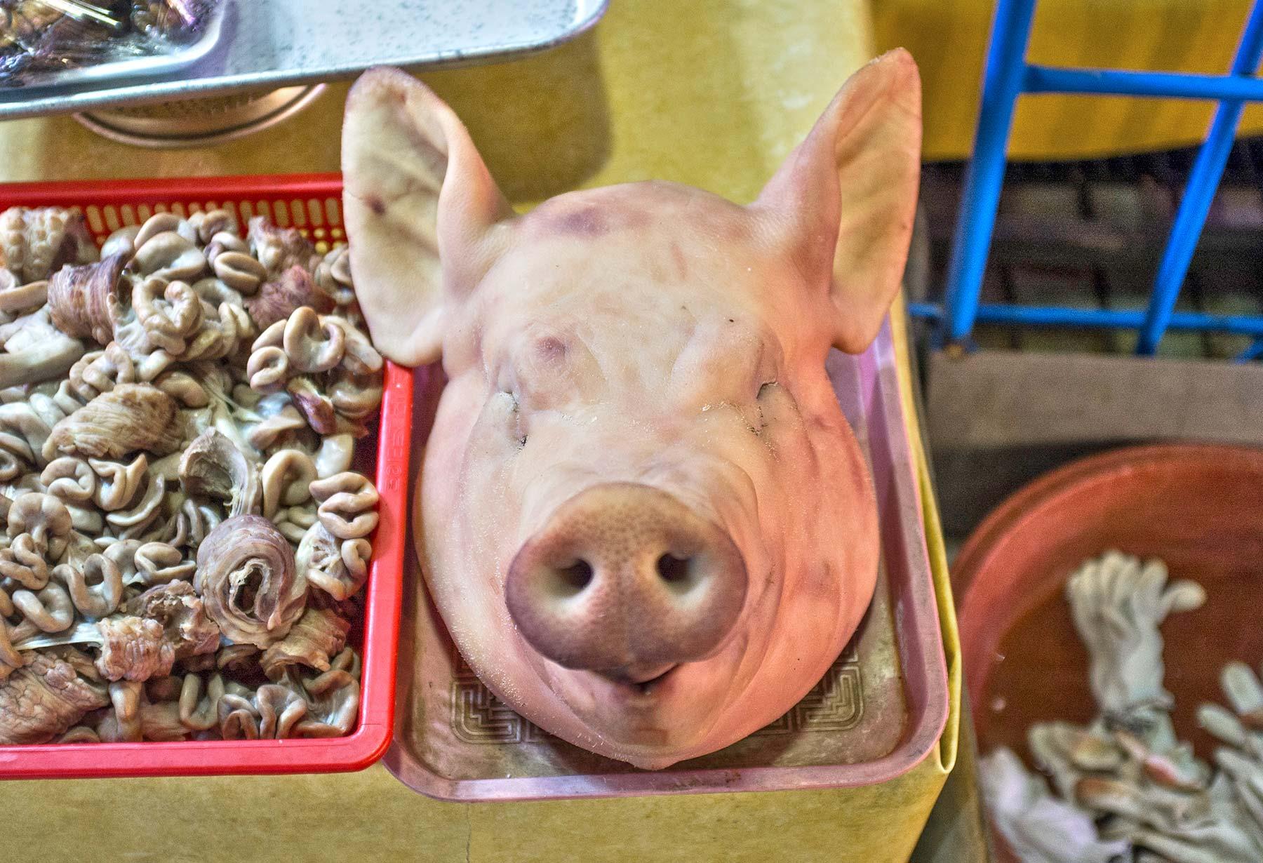 Pig's head.